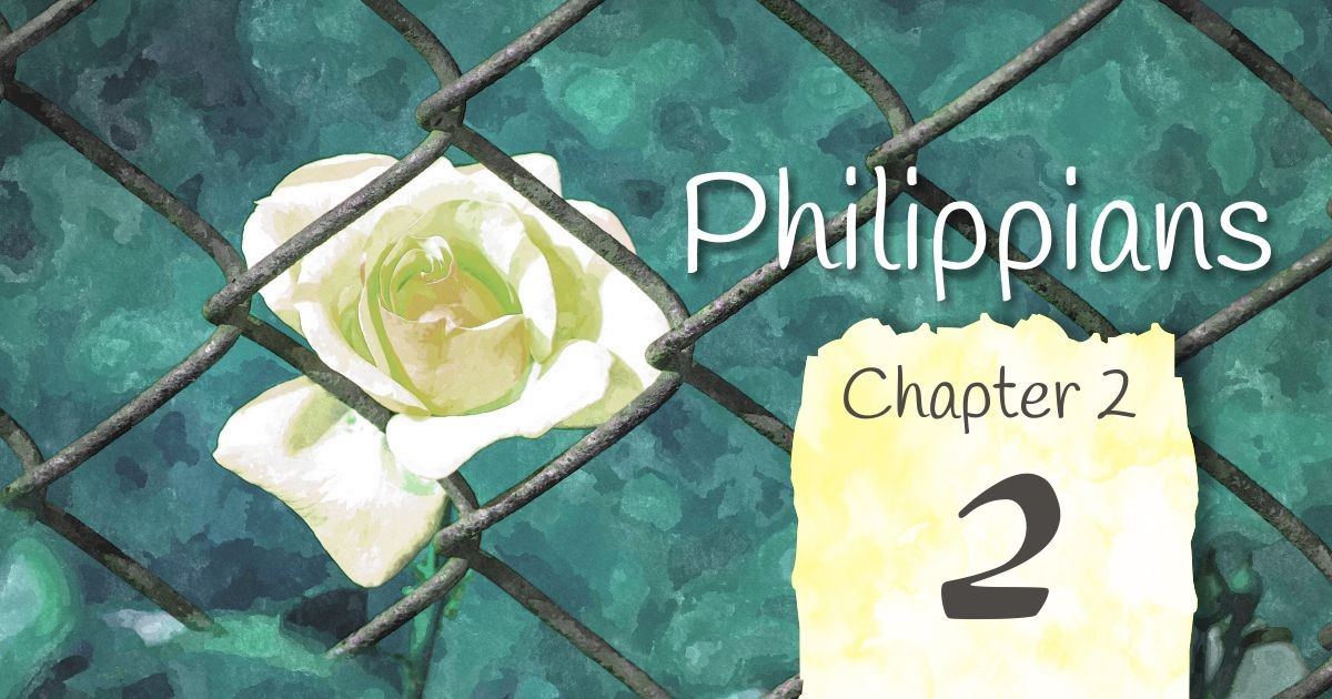 Philippians 2: A series of reflection on scripture